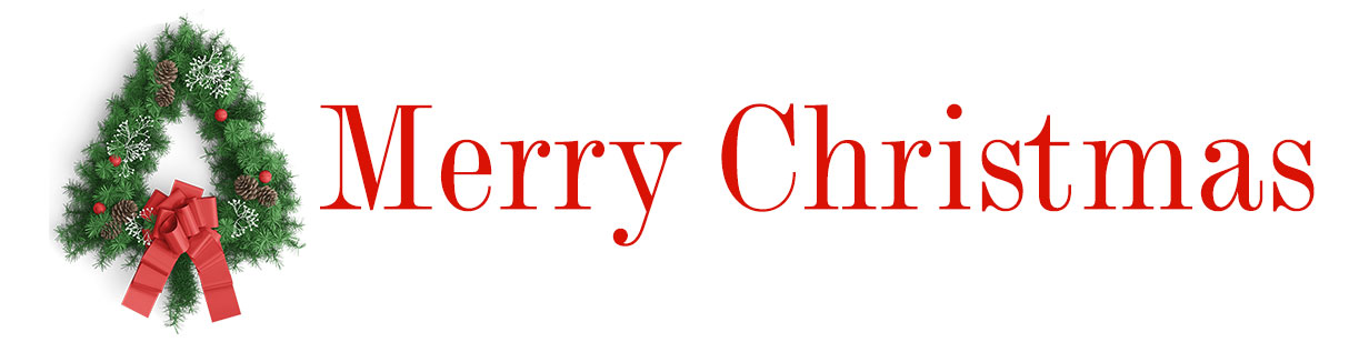 Merry Christmas! Celebrate the season with beautiful flowers, centerpieces, wreaths, decor and more!