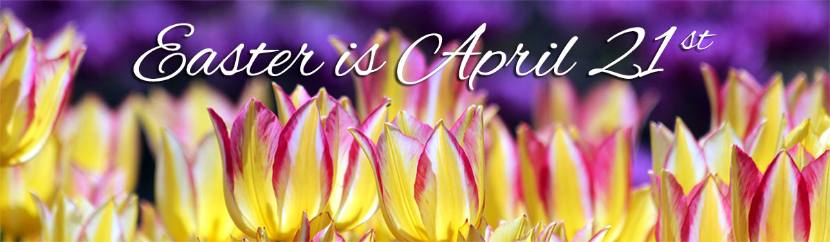Celebrate Spring and Easter with fresh spring flowers delivered!  Easter is April 21st