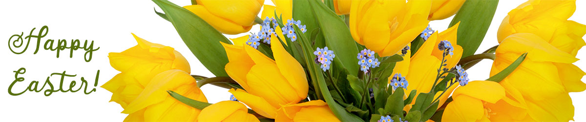 Celebrate Easter and the spring season with bright and beautfiul blooms!