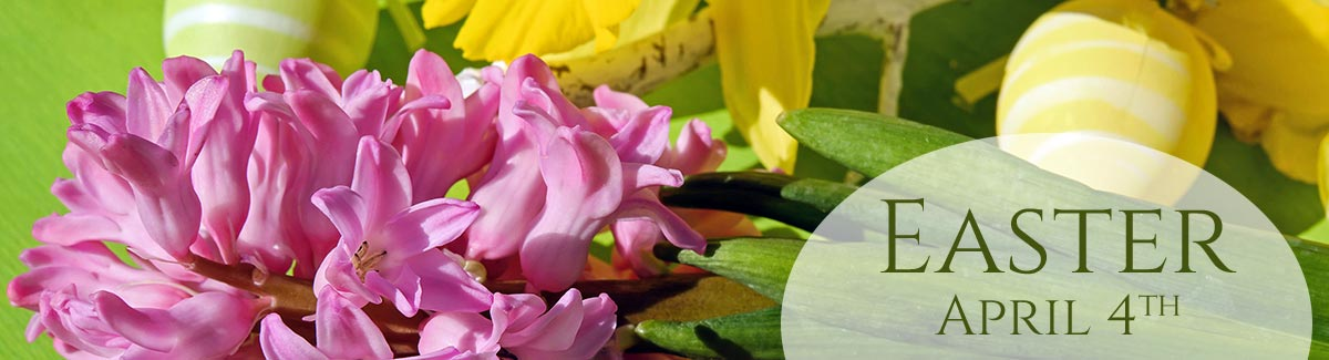 Easter is April 4th!  Order your spring flowers for delivery today!