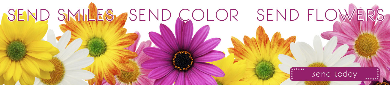 Send Smiles. Send Color.  Send Flowers!
