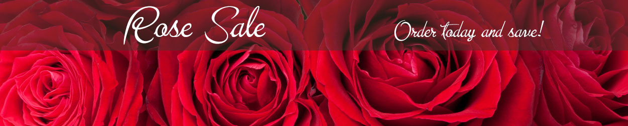 Save on beautiful fresh roses delivered locally today!