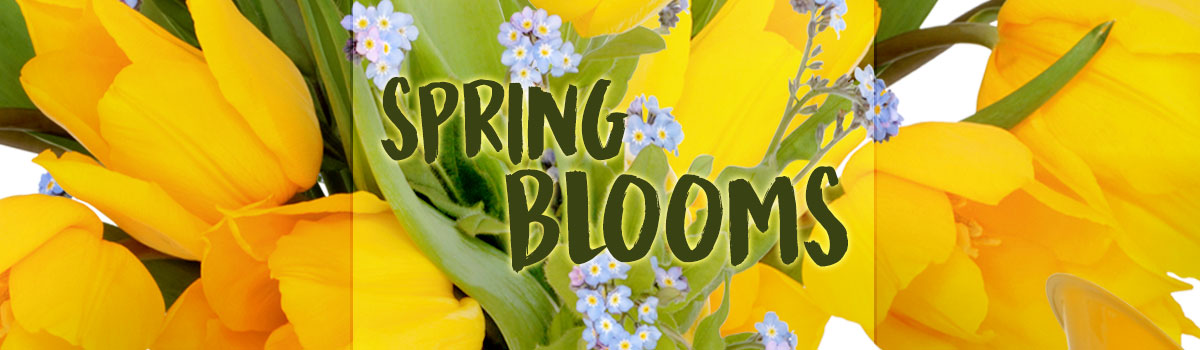Spring has arrived!  Send a burst of fresh spring blooms today!