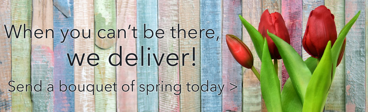 Celebrate spring and all the beautiful colors in vibrant blooms.  Order your spring flowers for delivery today!