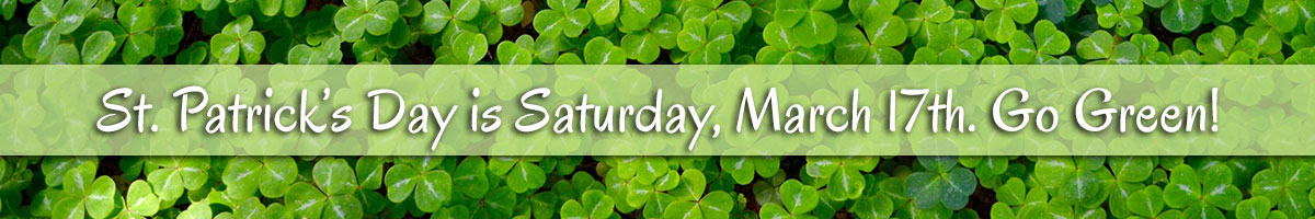Get a little bit green... it's St. Patrick's Day!  Send a bouquet of gorgeous green blooms to make their day memorable. March 17th!