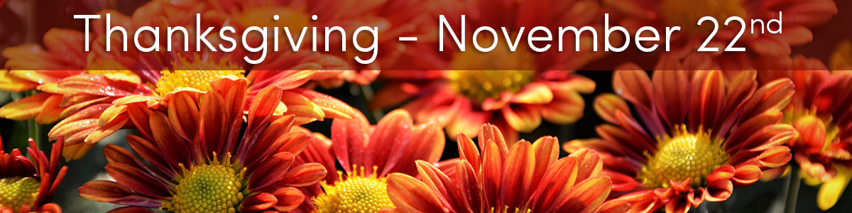 Thanksgiving is November 22nd.  Set the table with beautiful flowers, and send a warm autumn greeting to family and friends.