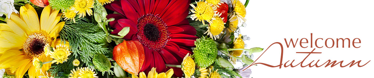 Welcome the Autumn Season with Fresh Fall Flowers