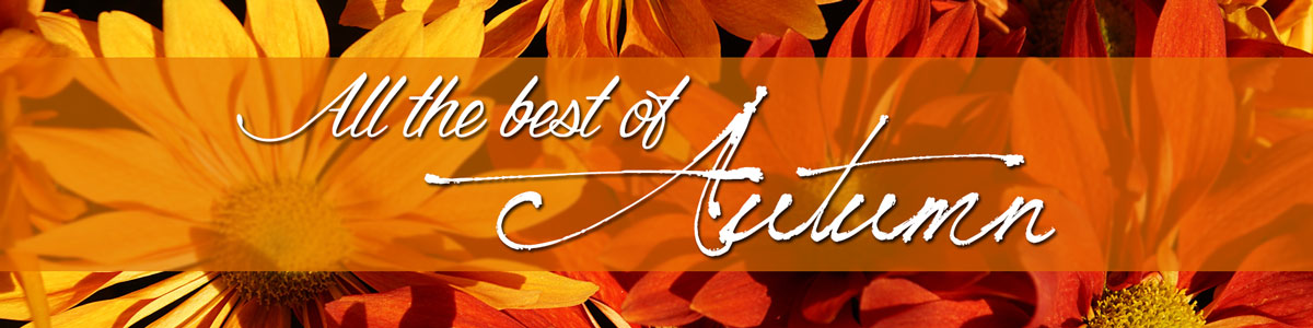 Greet the autumn season and all it's vibrant hues with fresh fall flowers today!