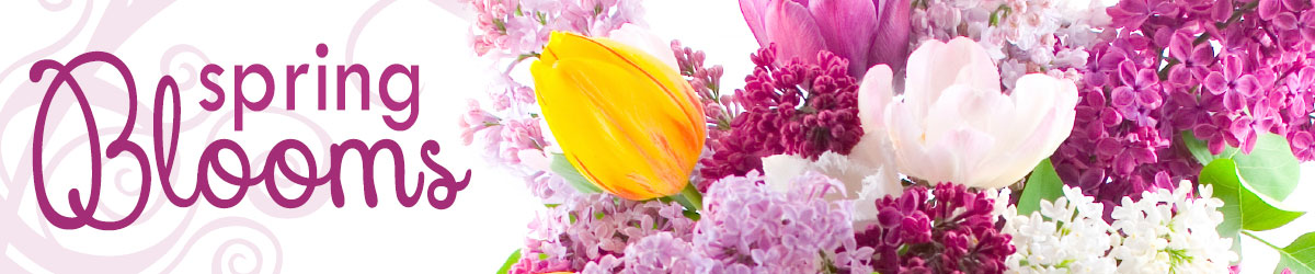 Celebrate spring with fresh spring flowers!
