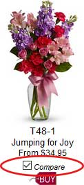 Compare Flowers before you buy. A florist website first.