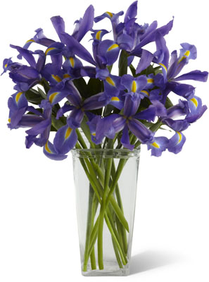 The FTD Iris Riches Bouquet
