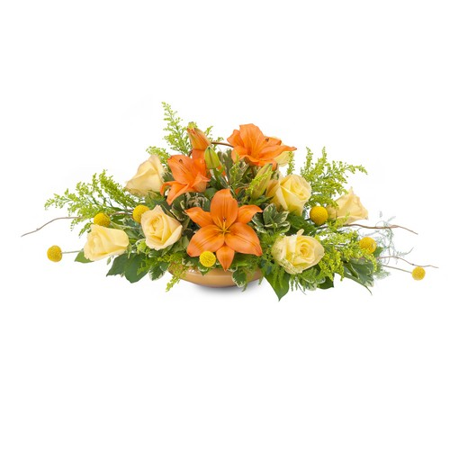 Blooming Fall