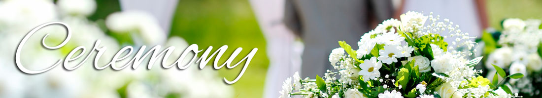 Hobby hill florist your flower shop online in sebring florida bouquets mightylinksfo